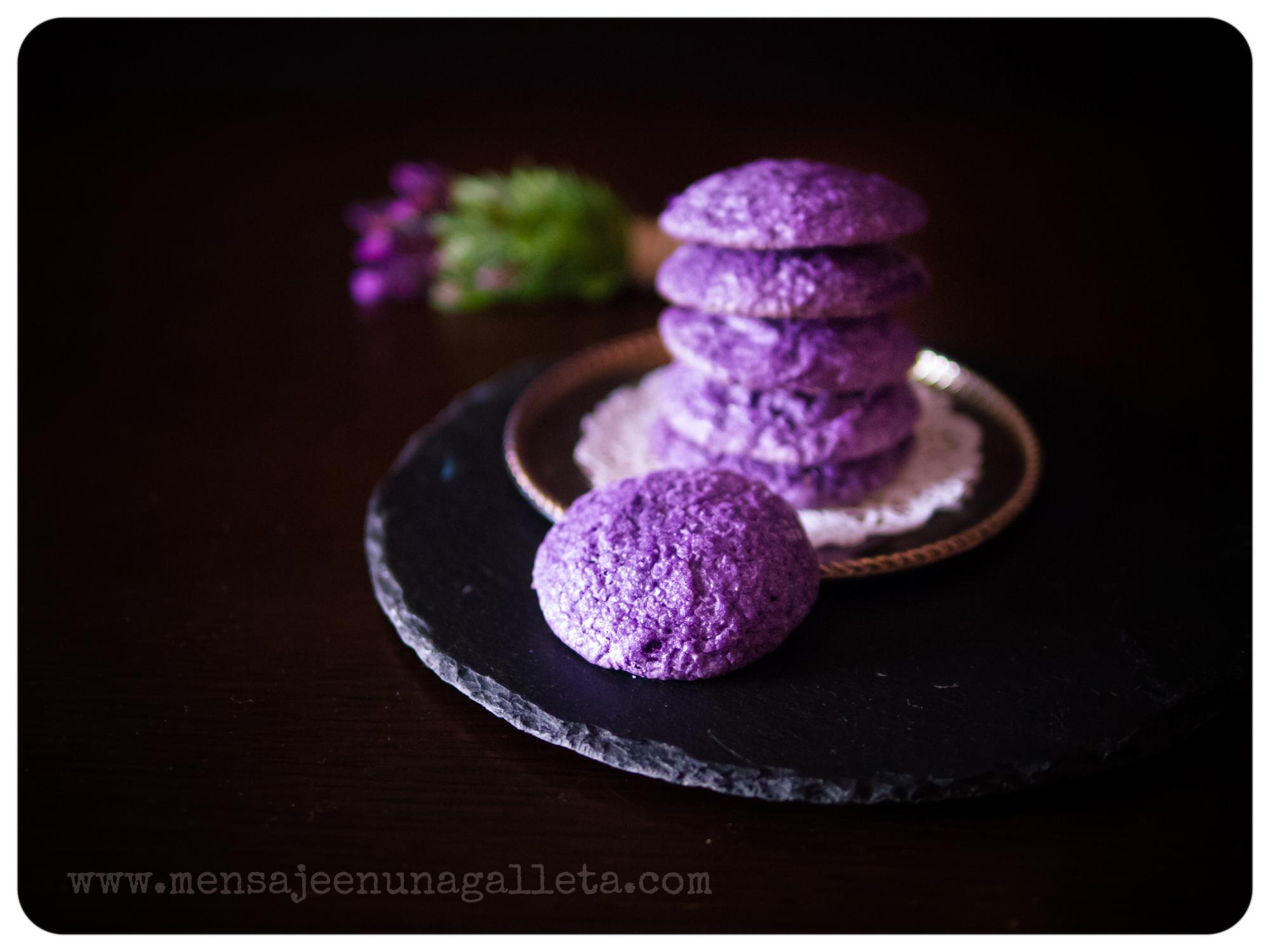 violetas3